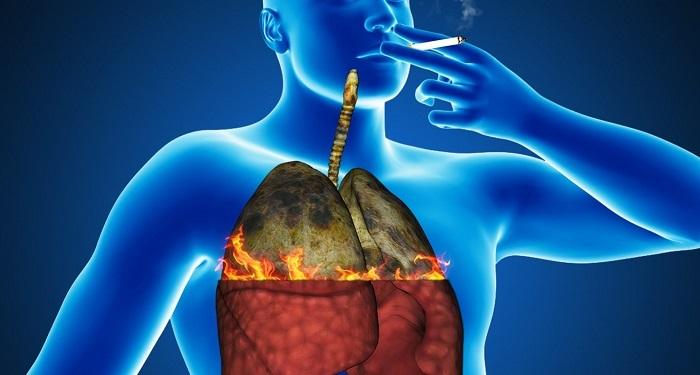 phổi bị hủy hoại vì khói thuốc lá
