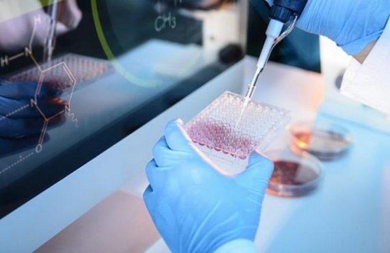 công nghệ tách chiết tế bào gốc