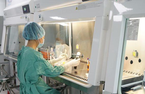 Làm hồng vùng kín bằng công nghệ tế bào gốc