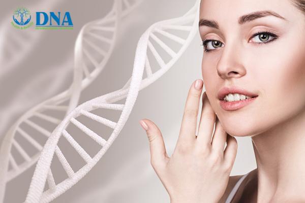 chống lão hóa bằng tế bào gốc