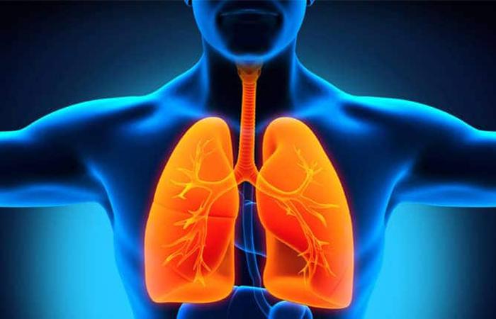 thanh lọc độc tố trong phổi