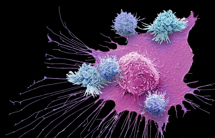 liệu trình nâng cao hệ miễn dịch tại Bệnh viện quốc tế DNA