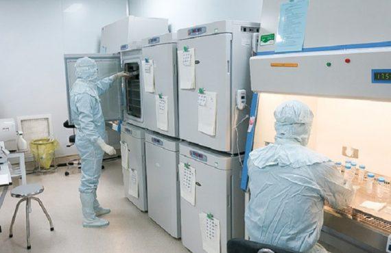 tế bào gốc được nghiên cứu và tách chiết