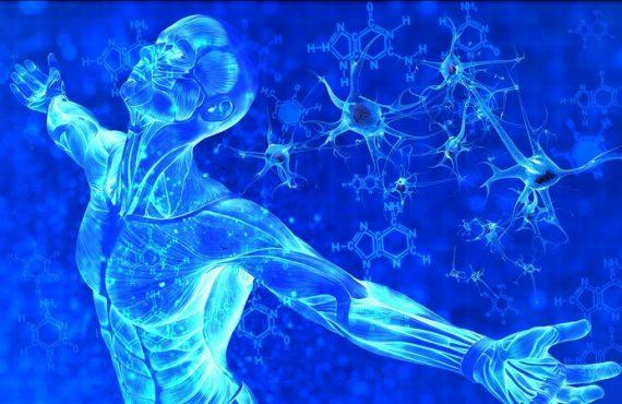 ứng dụng công nghệ tế bào gốc, stem cell